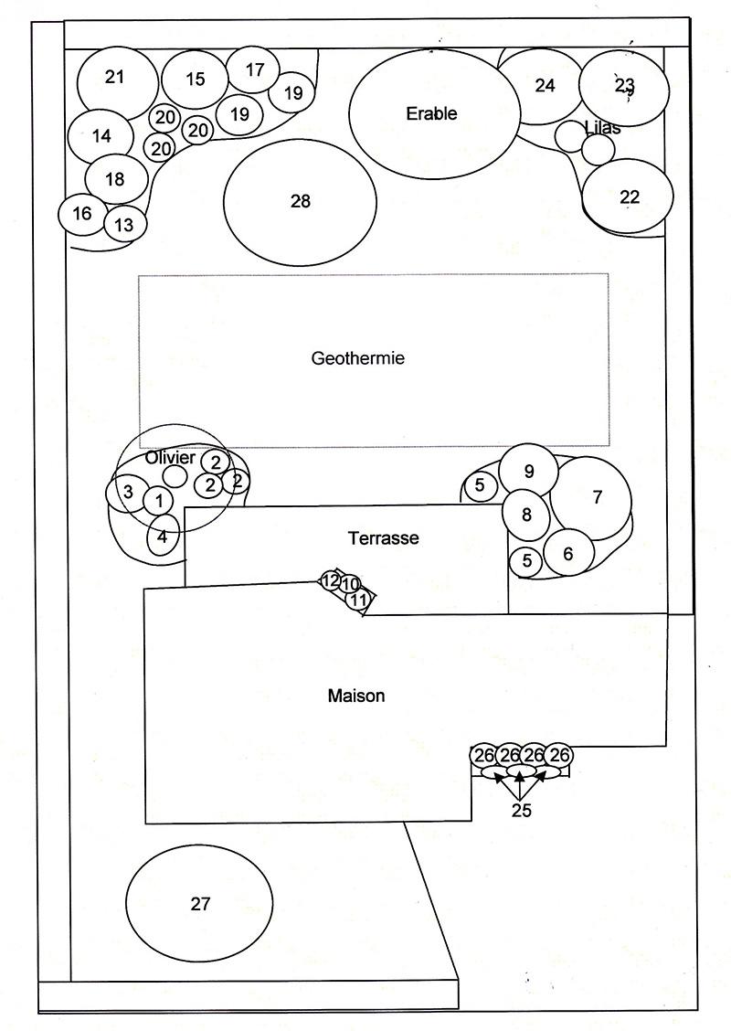 exemple de plan amenagement pepiniere