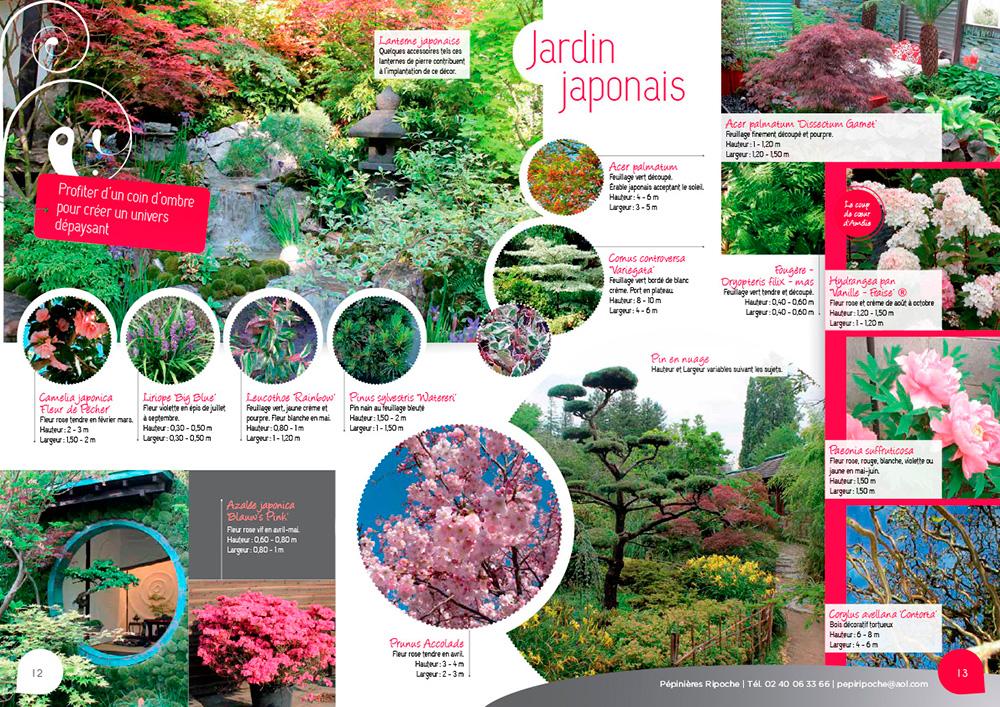 Fleurs, arbustes, lanterne chinoise pour des jardins japonais