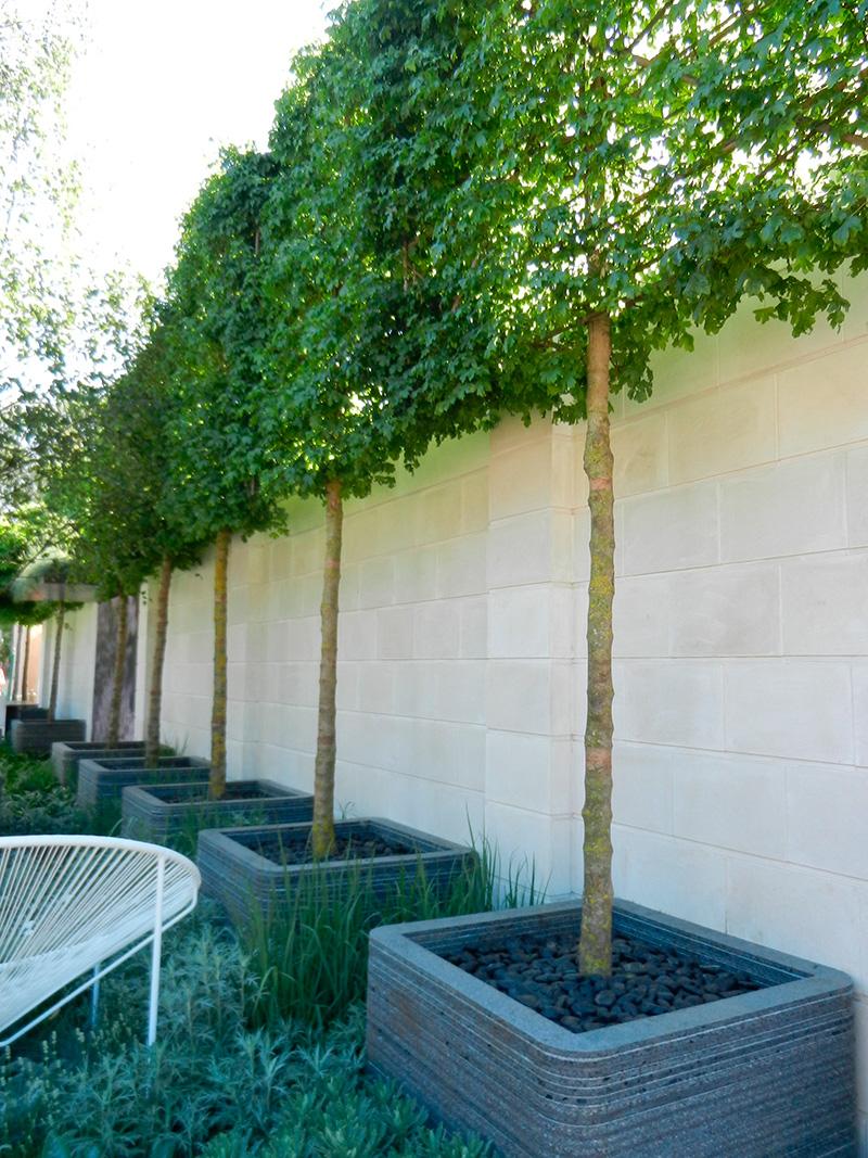 Jardins Contemporains concernant les jardins contemporains - blois 41 les jardins de l 39 v ch