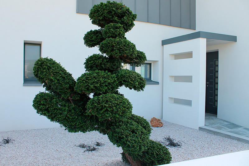 V g taux min raux pour des jardins contemporains for Massif jardin contemporain
