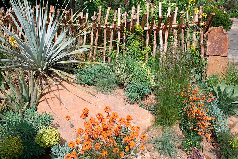 Jardins exotiques avec des fleurs et palmiers pour voyager for Idee amenagement jardin avec palmier