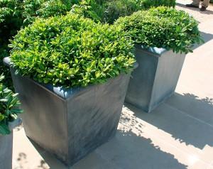 pot et deco jardins contemporains