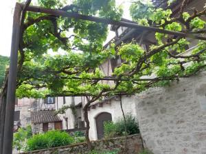 aménagement extérieur jardins gourmands