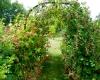 idées jardins gourmands ripoche pépiniéristes la chapelle basse mer