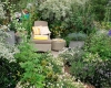 idées jardins anglais ripoche pépiniéristes 44