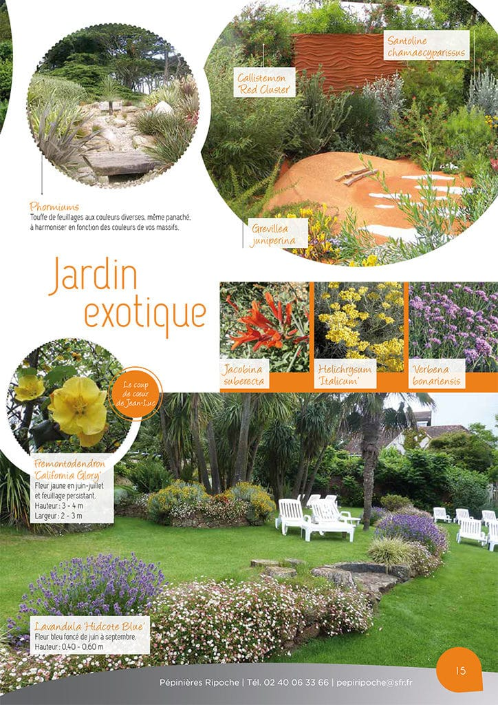 https://www.pepinieres-ripoche.fr/wp-content/uploads/2017/11/Catalogue2016-15-724x1024.jpg