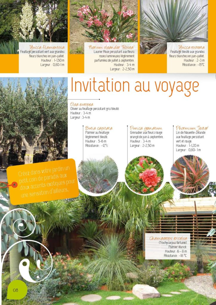 https://www.pepinieres-ripoche.fr/wp-content/uploads/2021/01/Catalogue-particuliers-2011_BD-pdf_Page_08-725x1024.jpg