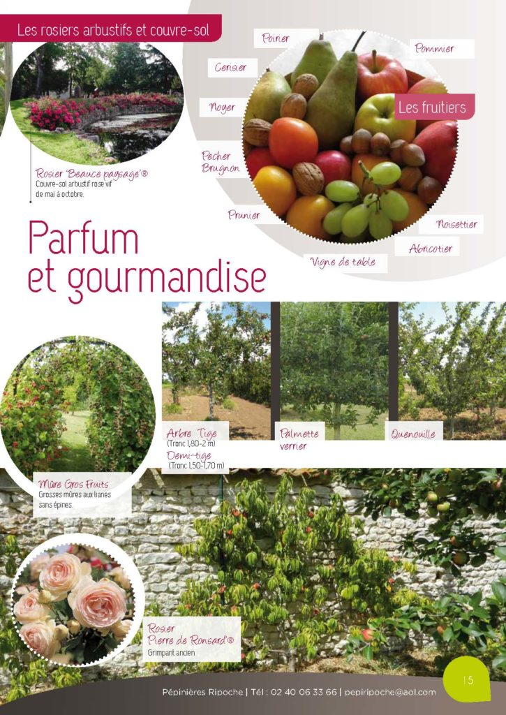 https://www.pepinieres-ripoche.fr/wp-content/uploads/2021/01/Catalogue-particuliers-2011_BD-pdf_Page_15-725x1024.jpg