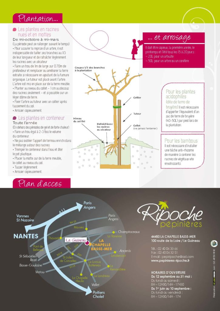 https://www.pepinieres-ripoche.fr/wp-content/uploads/2021/01/Catalogue-particuliers-2011_BD-pdf_Page_16-725x1024.jpg