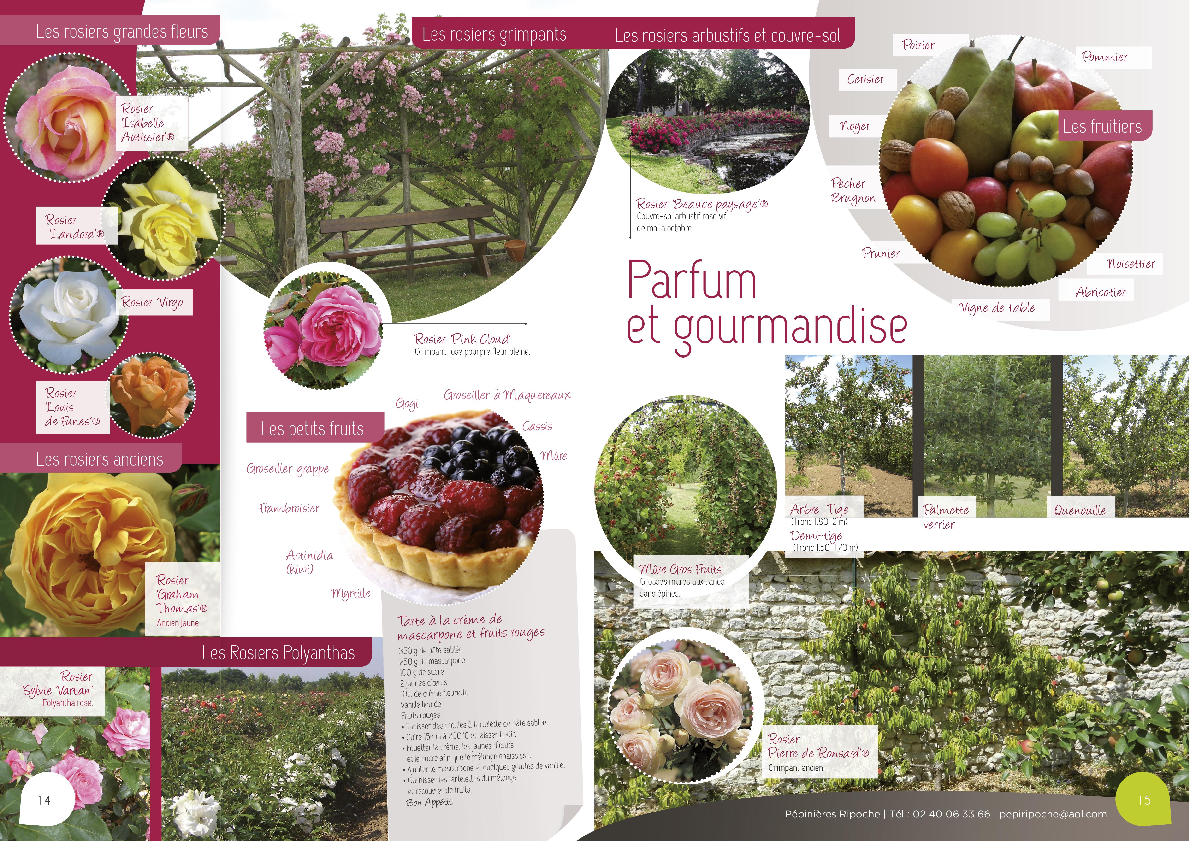 Parfum et gourmandise, Arbres fruitiers, Petits fruits et Rosiers