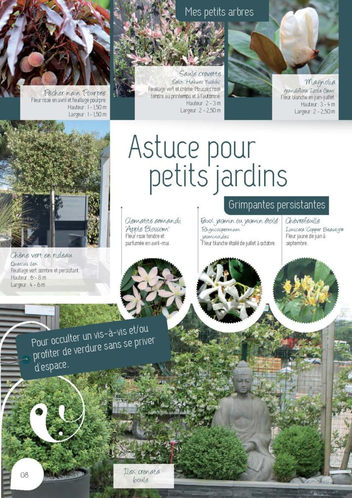 https://www.pepinieres-ripoche.fr/wp-content/uploads/2021/01/Catalogue-particuliers-Ripoche-2018-BD.pdf_Page_08-724x1024.jpg