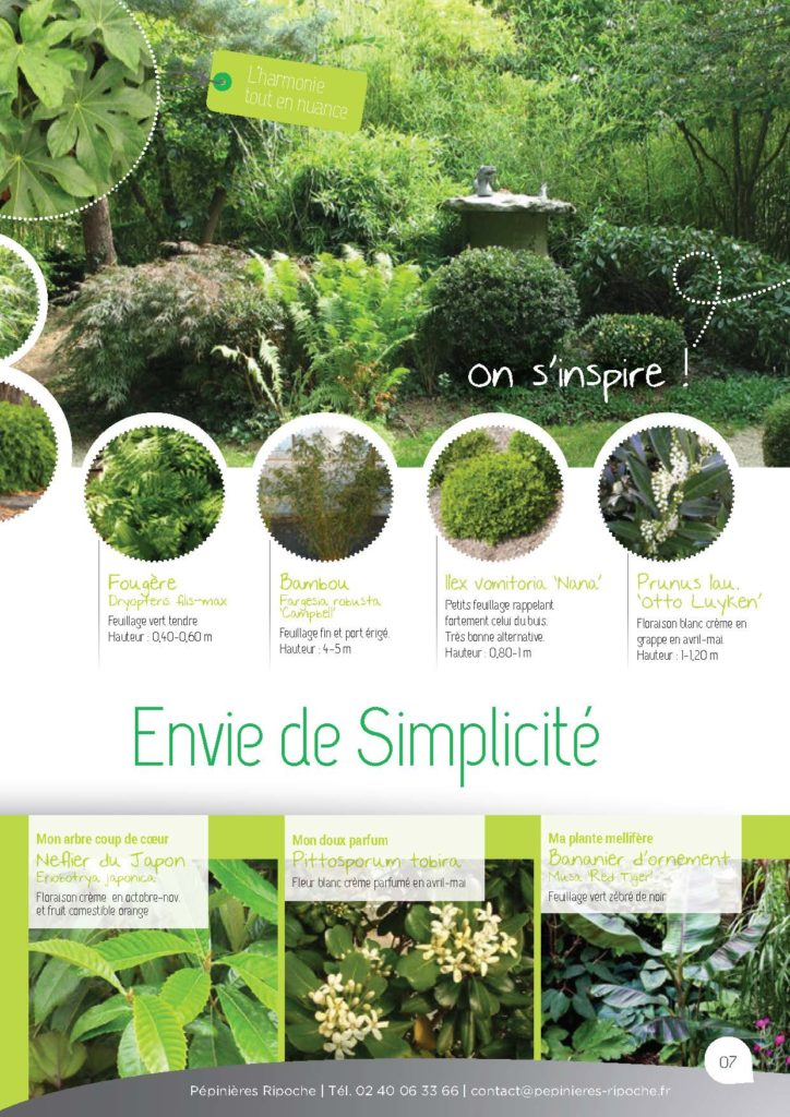 https://www.pepinieres-ripoche.fr/wp-content/uploads/2021/01/Catalogue-particuliers-Ripoche-2020-bd_Page_1_Image_0001_Page_07-724x1024.jpg