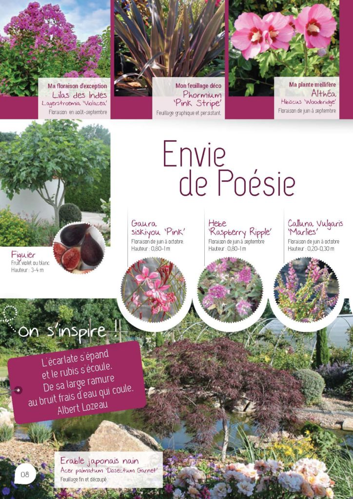 https://www.pepinieres-ripoche.fr/wp-content/uploads/2021/01/Catalogue-particuliers-Ripoche-2020-bd_Page_1_Image_0001_Page_08-724x1024.jpg