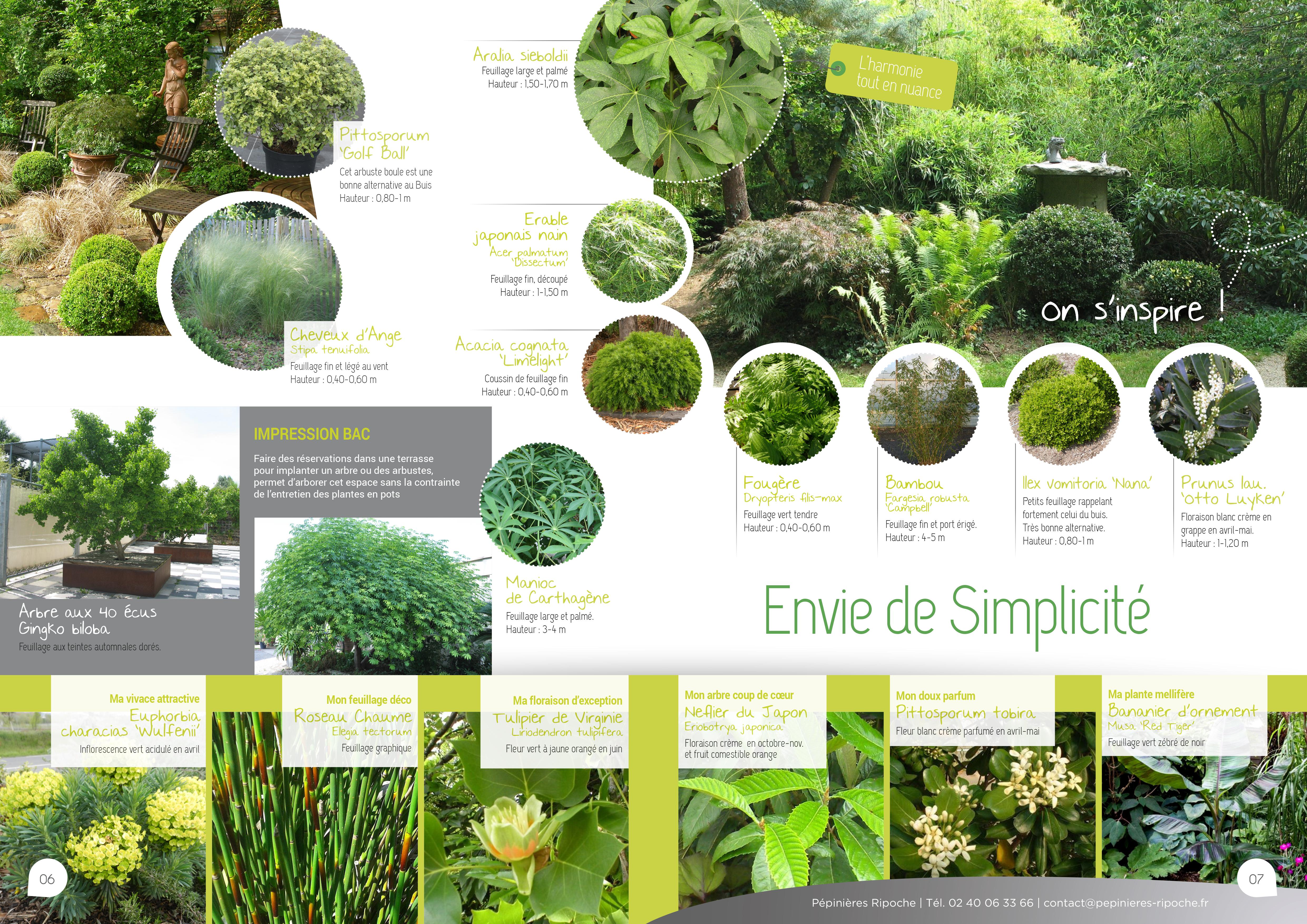 jardins secs, tendance pépinière près de nantes